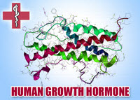 hgh-growth-hormone