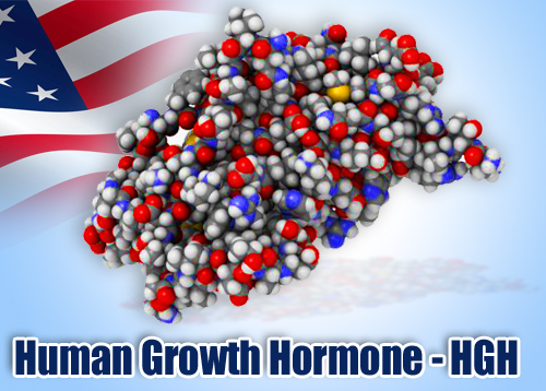 human growth hormone research paper Human growth hormone is a single-chain polypeptide produced commercially from recombinant animal cells as well as recombinant microorganisms its increased applications have requested development of highly efficient production systems using particularly animal cells.
