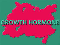 hgh best hormone supplement