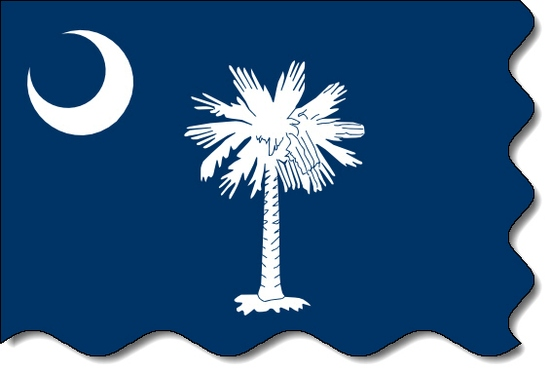 South Carolina state flag, medical clinics