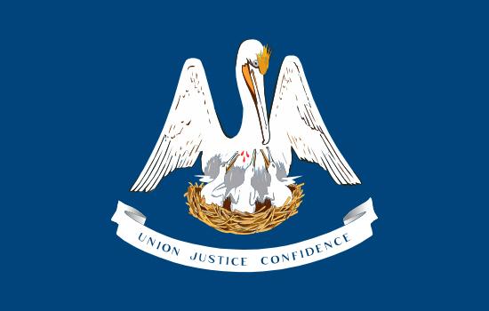 Louisiana state flag, medical clinics
