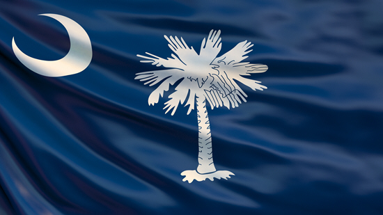 South Carolina state flag, medical clinics