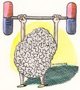 nootropic illustration of brains and brawn 266x300
