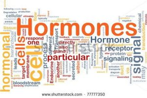 stock-photo-background-concept-wordcloud-illustration-of-hormones-hormonal-signal-77777350