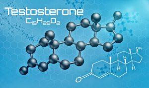 Testosterone chemical 300x179