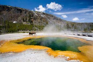 Yellowstone national park 300x200
